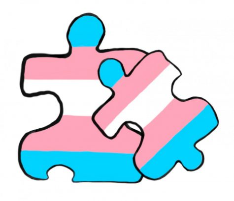 Non-Binary In Social Binary: The Relationship Between Autism and Transness